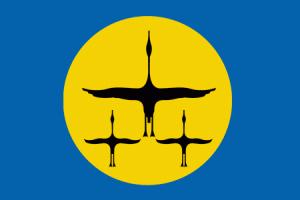 Flag_of_Nanaysky_rayon_(Khabarovsk_kray).png
