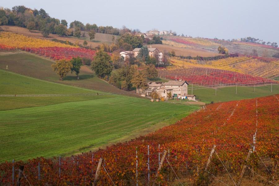 Кастельветро-ди-Модена: поздняя осень на севере Италии