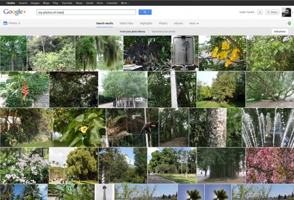 Google+Trees