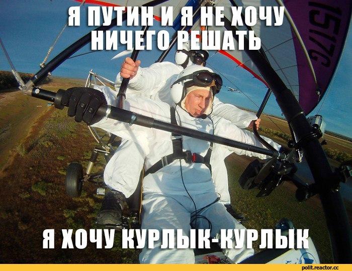 Путин-пу-политота-ебать-351880.jpeg