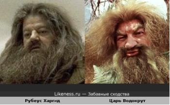 двойники Хагрид - Водокрут