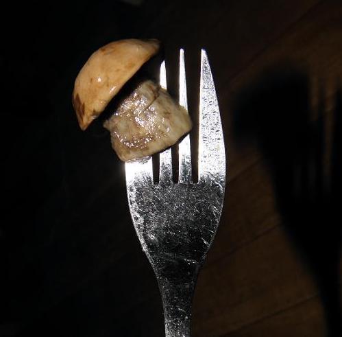 гриб на вилке1