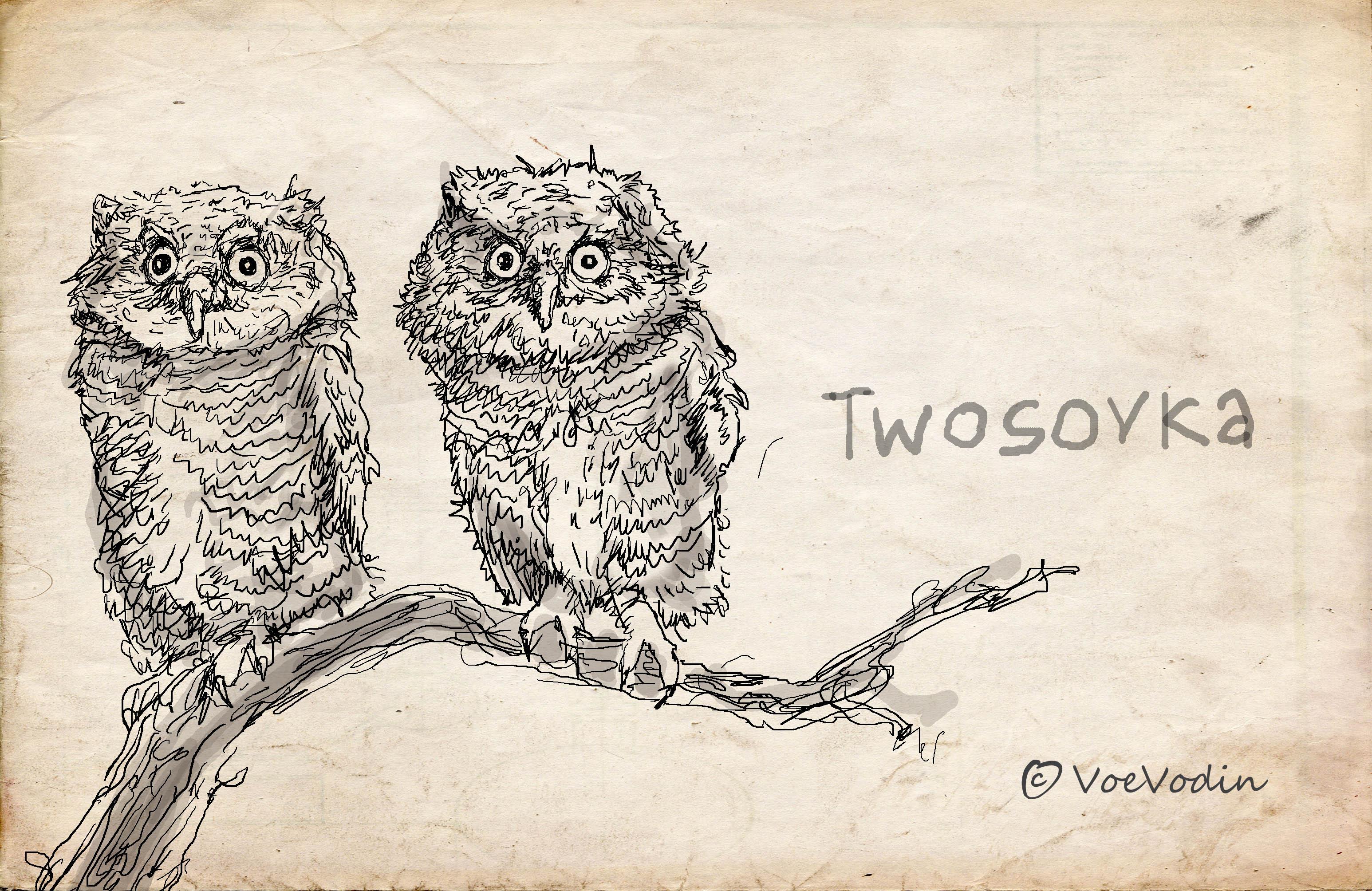 twosovka