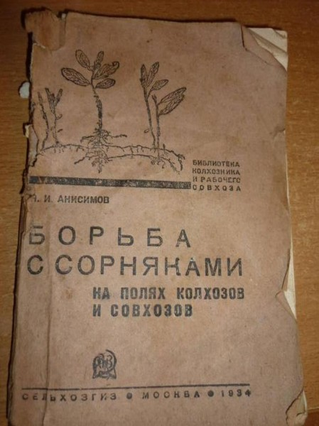 сорняки1