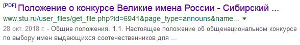 20181023_19-46-ВИР-Положение~20190103stu_ru~p00xGoogle