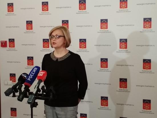 20190204_15-55-Общественную палату Мурманской области возглавила активистка из Мончегорска-pic1
