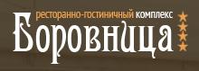V-logo-borovnica_ru
