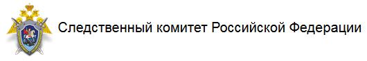 V-logo-sledcom_ru-v2