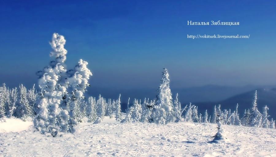 Зимнее утро (Наталья Зяблицкая).jpg