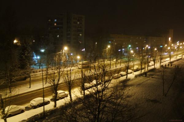 snegon