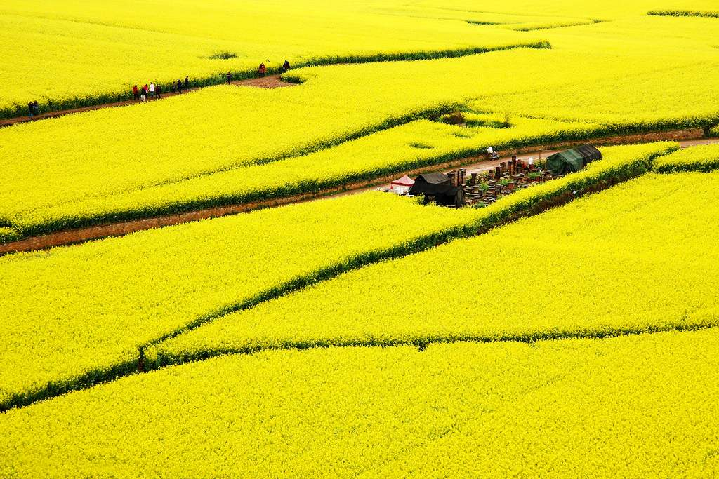 Luoping-China-attraction