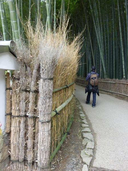 5-Бамбуковый лес Сагано в Японии