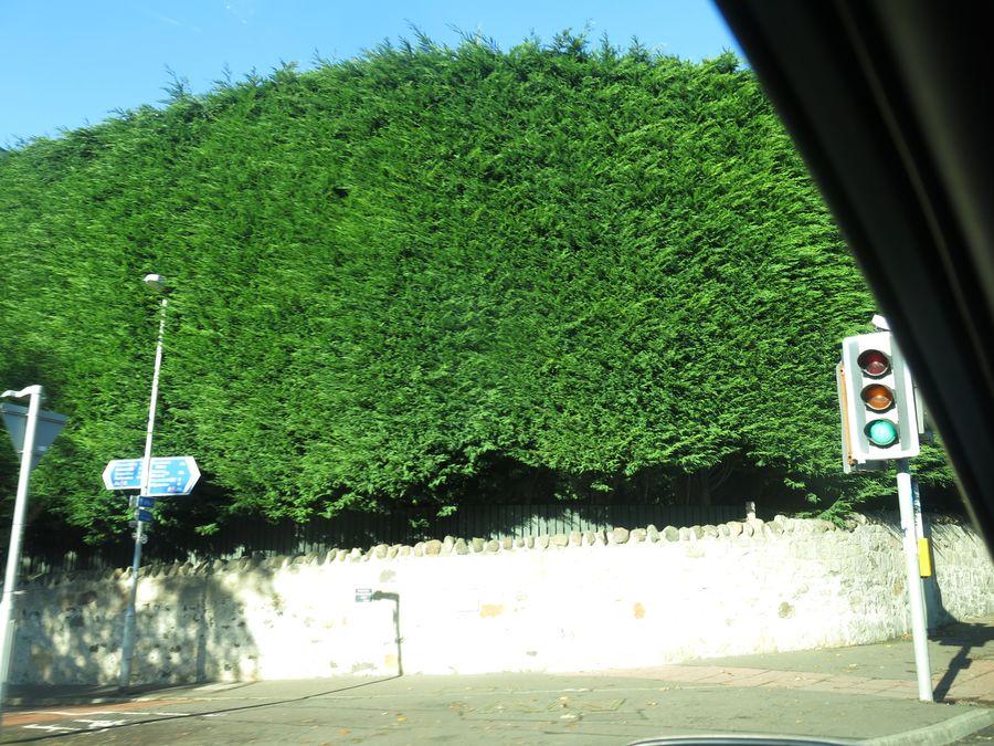 http://ic.pics.livejournal.com/volha/675053/23340/23340_original.jpg