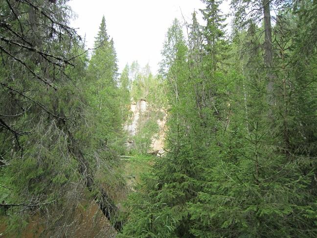Общая картинка пространства истока подземной речки Карьяла.