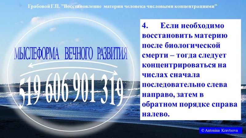 КОЖА — 519 606 901 319