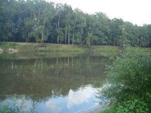 Река Сейм_в Батурине