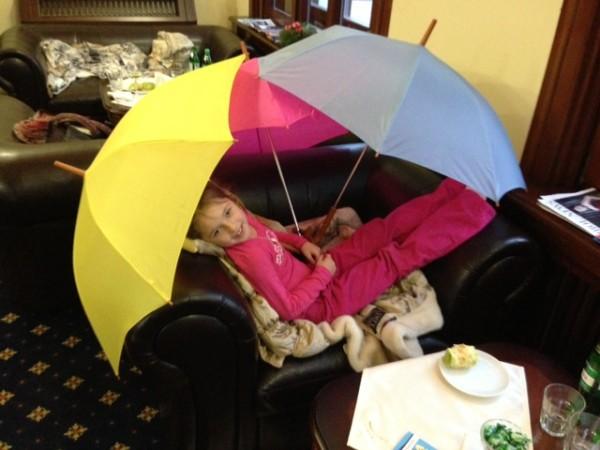 Ариша зонтики