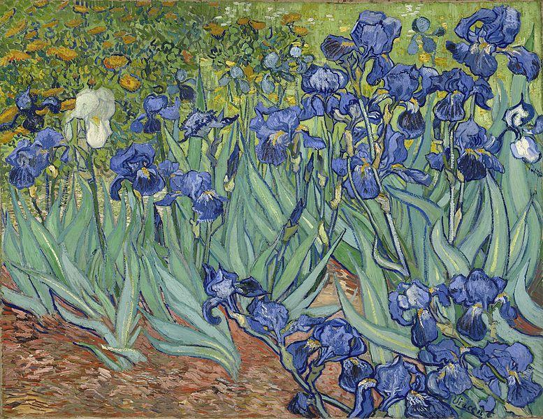 Винсента Ван Гог, «Ирисы» (фр. Les Iris) 1889 картина приобретена в 1990 г. Getty Museum на Sotheby's (Los Angeles)
