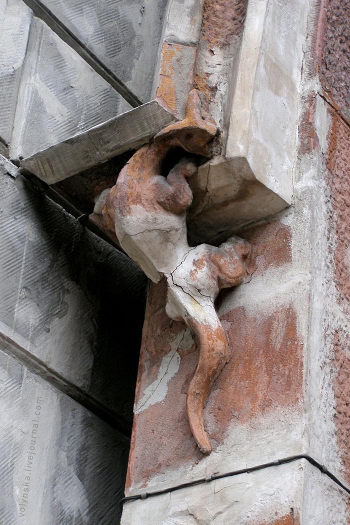 Саламандра на фасаде. Костёл св. Николая, Киев.