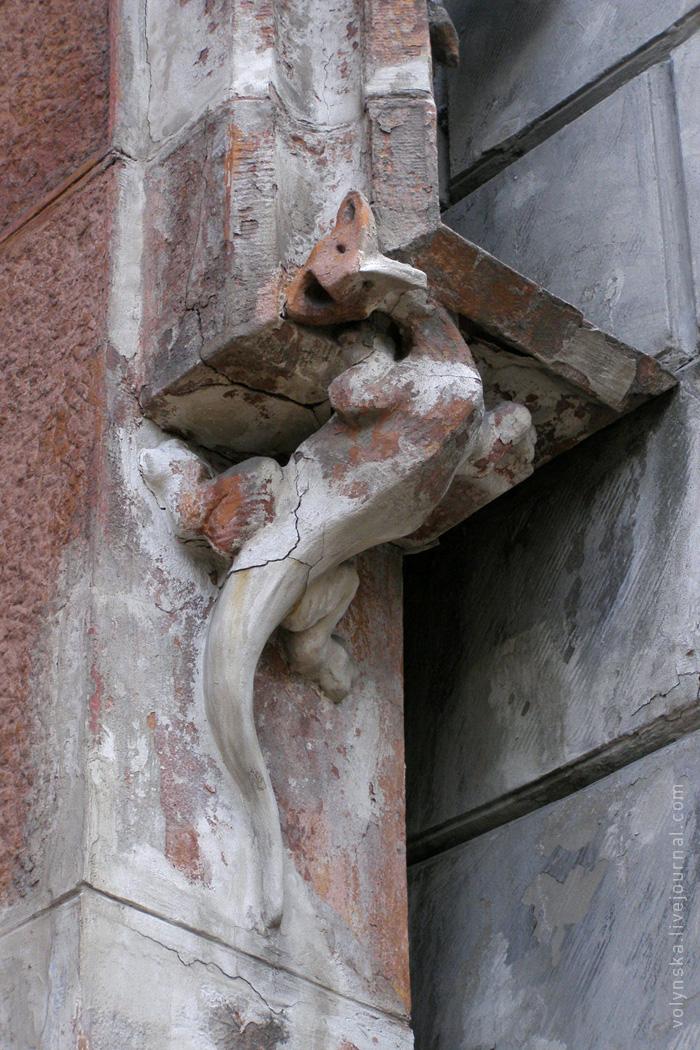 Саламандра на фасаде костёла св. Николая. Киев.