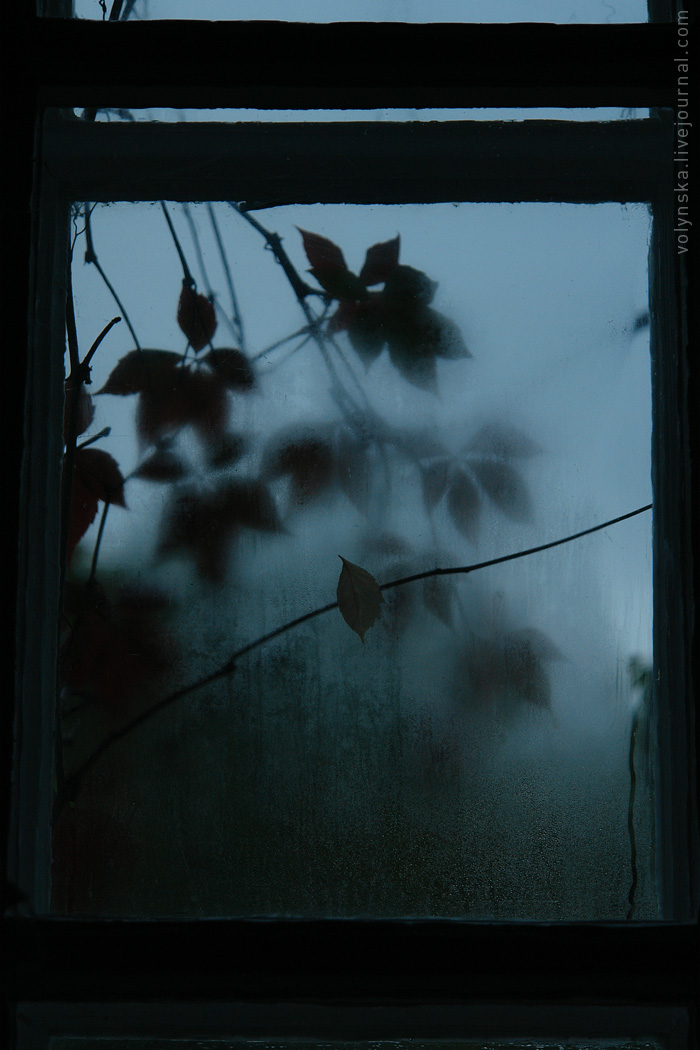 Осеннее окно.