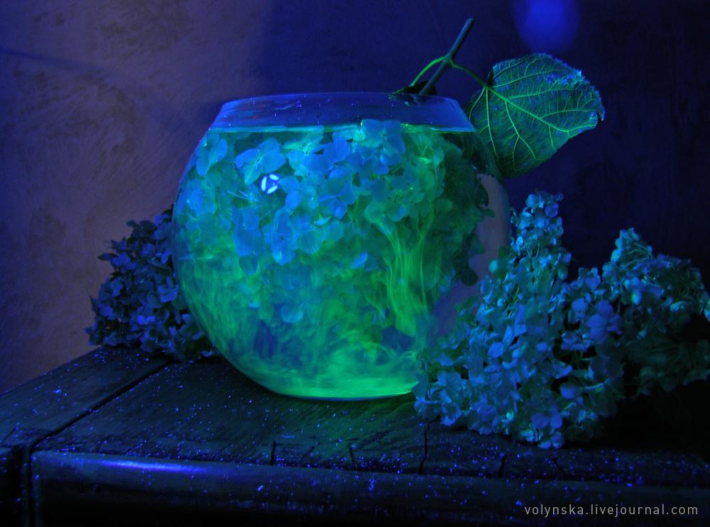 Натюрморт с флюоресцентной краской и ультрафиолетовым источником света, 2019.