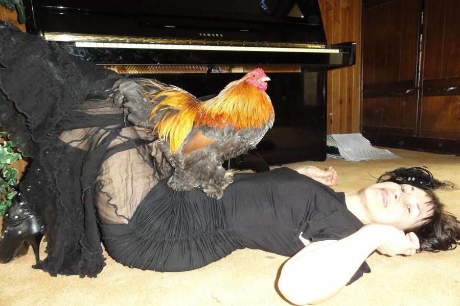 Секс с курицой