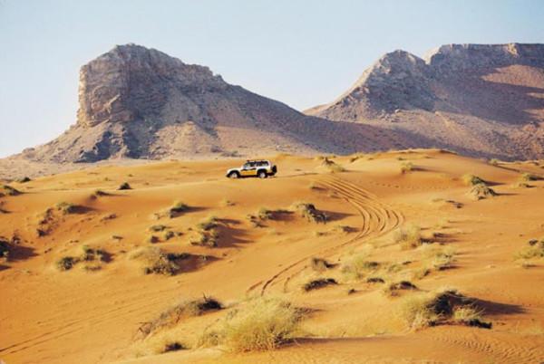 Сафари в пустыне ОАЭ - ОАЭ 2013