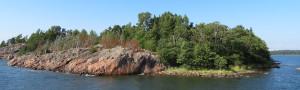 Один из многочисленных островов. Деревья.jpg