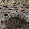 Конец галереи: свод в сталактитах.jpg