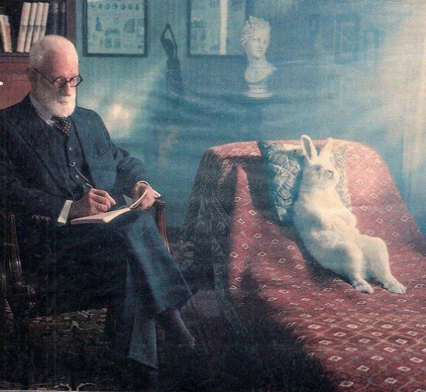 Фрейд и кролик