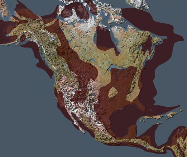 Всемирный потоп в географической летописи нефтегазоносных бассейнов Земли (часть 3)