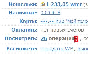 WebMoney Кошелёк » Главная - Google Chrome_2013-03-22_18-05-28