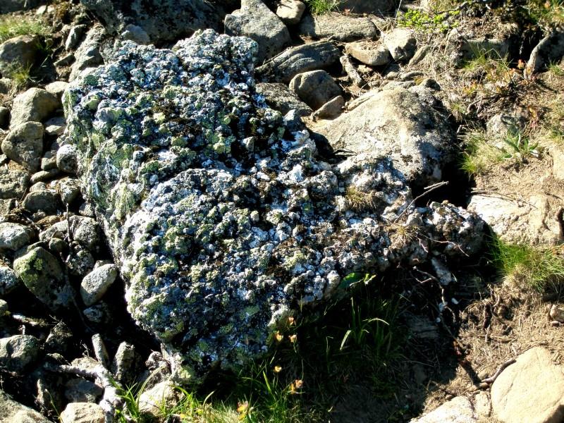 Красивые камушки на склонах