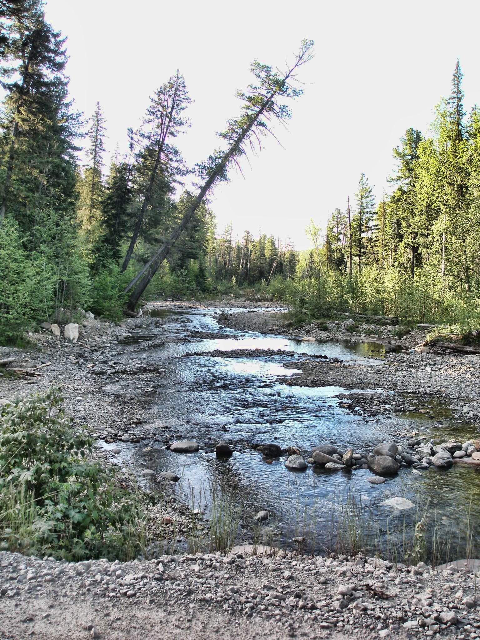 Река и лес под Конжаком