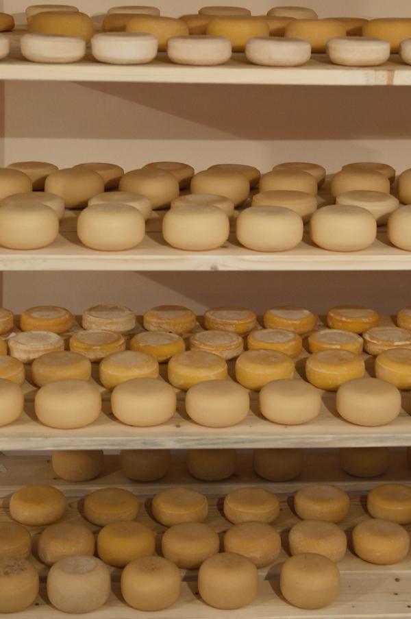 Как делают фермерский сыр