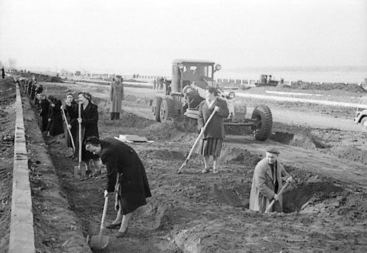 Посадка-лип-на-набережной-Октябрь-1956-г
