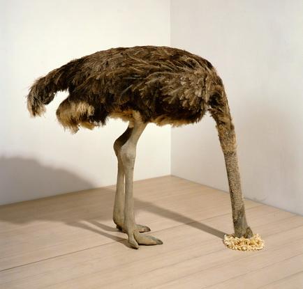 Поза страуса