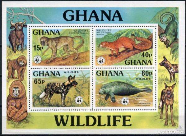 Гана_письмо