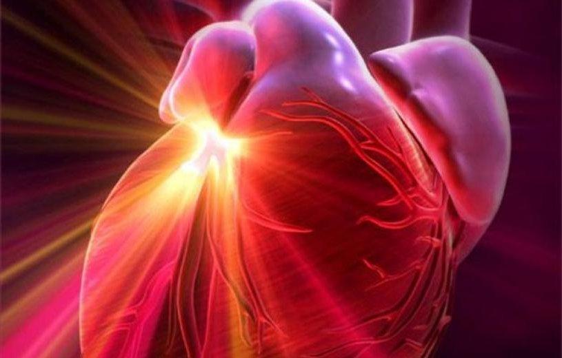 Сердце1