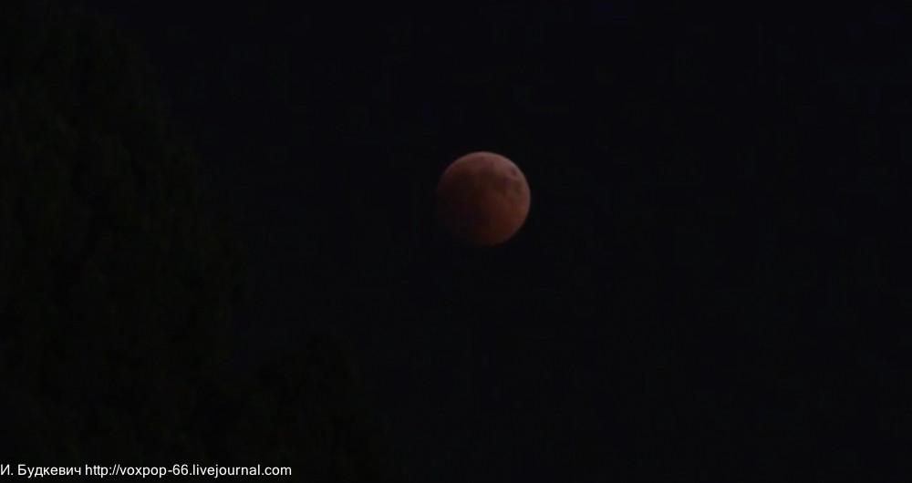 луна11