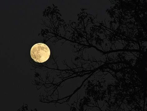 луна1