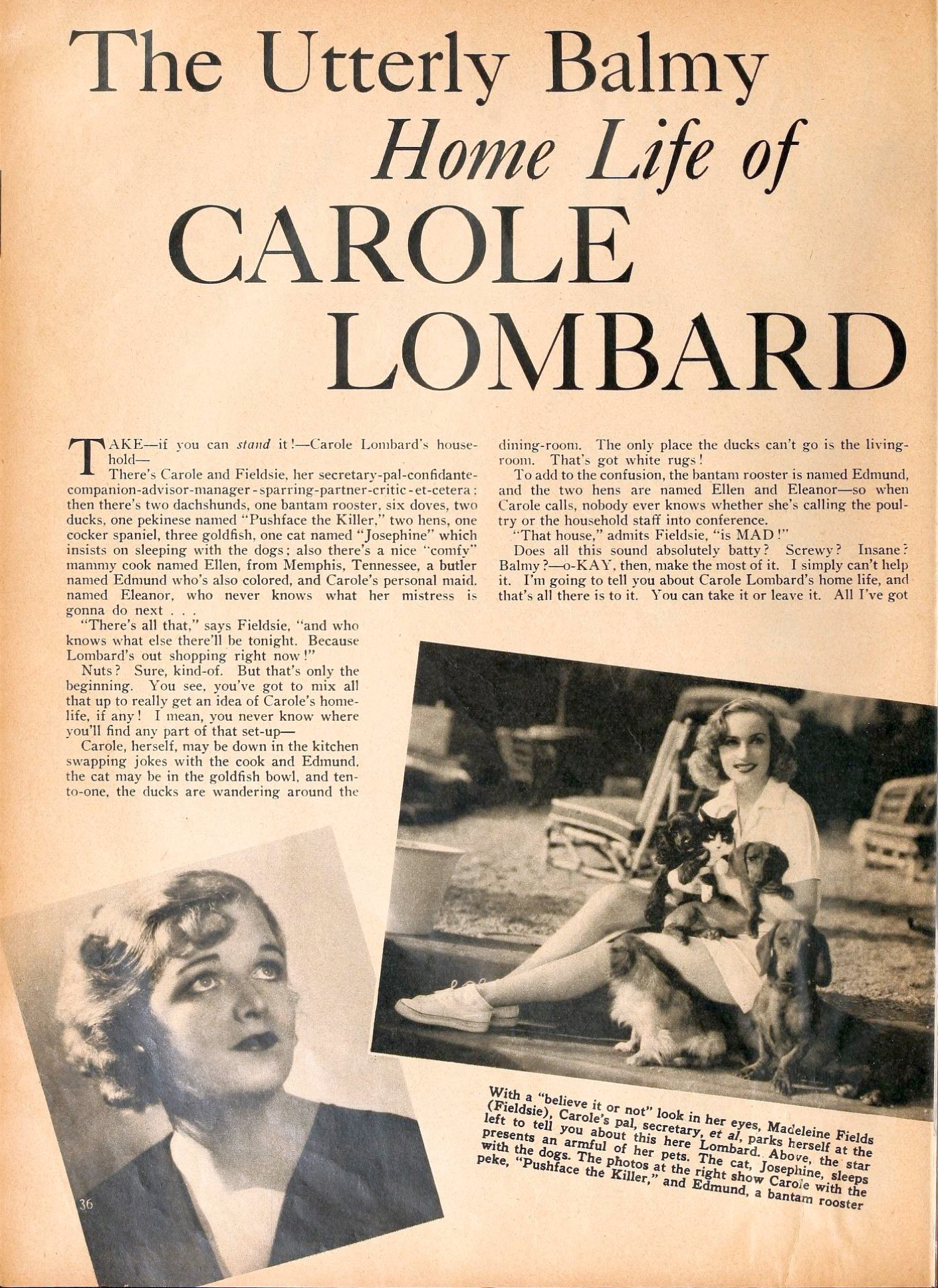 carole lombard motion picture february 1937aa