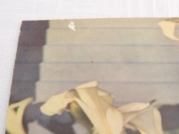 carole lombard kodachrome 1934ac