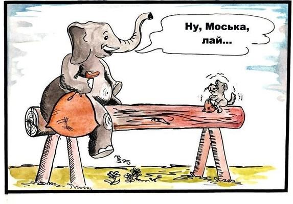 2020 06 09 слон и моська