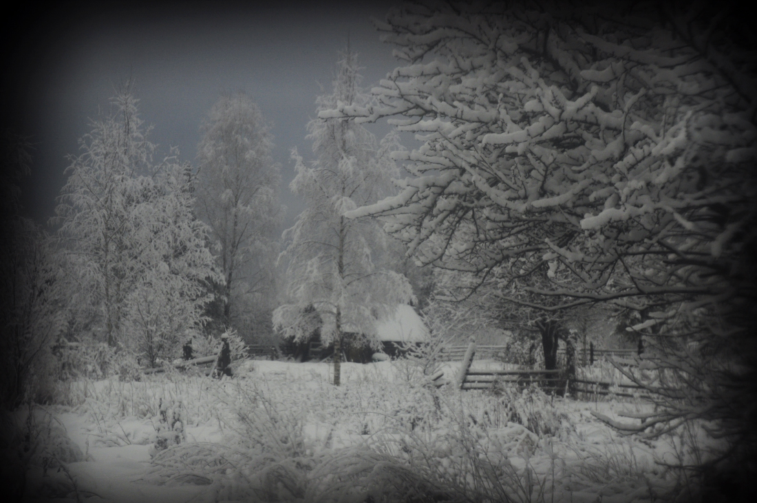 zima_DSC3933-3.jpg
