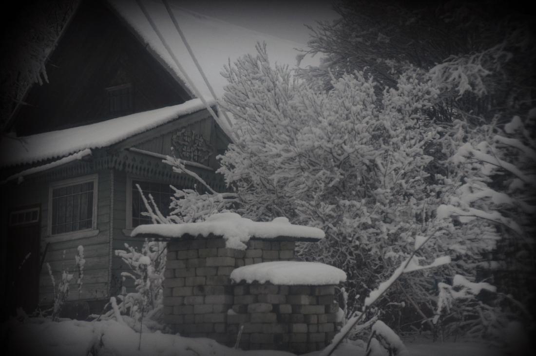 zima_DSC4046-3.jpg