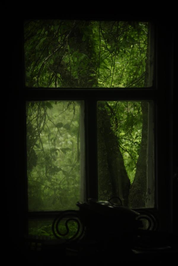 okno_DSC2641.jpg