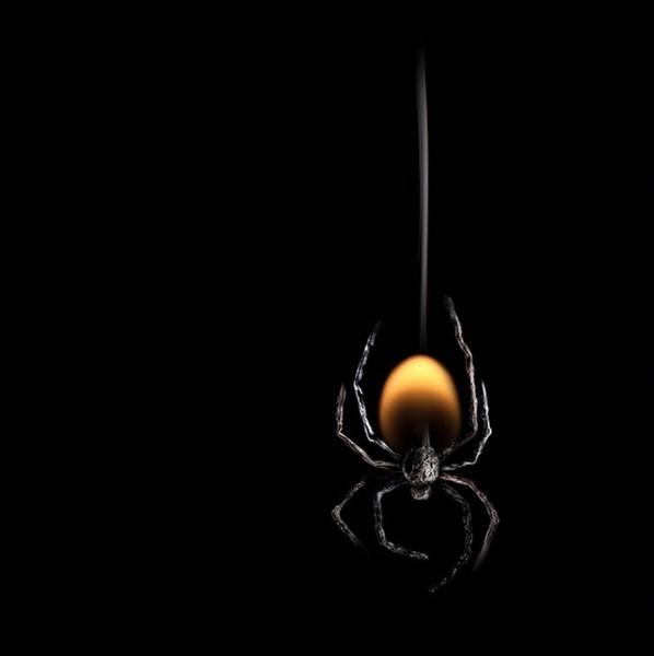 Burning-matches-3