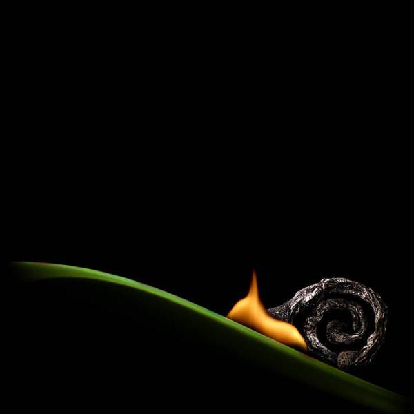 Burning-matches-9